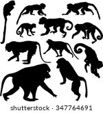 set of silhouettes of monkeys | Shutterstock . vector #347764691
