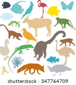 set of colored silhouettes of... | Shutterstock . vector #347764709