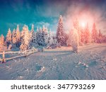 colorful winter sunrise in the... | Shutterstock . vector #347793269