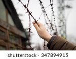 refugee trying to climbing the... | Shutterstock . vector #347894915
