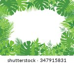 vector tropical jungle... | Shutterstock .eps vector #347915831