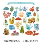 set of isolated colorful corals ... | Shutterstock .eps vector #348051524