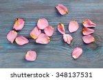 pink rose petals imaging word...   Shutterstock . vector #348137531