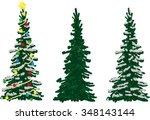 vector  three spruce trees at... | Shutterstock .eps vector #348143144