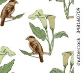 graphic bird and flowers... | Shutterstock .eps vector #348160709
