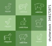collection of farm animals... | Shutterstock .eps vector #348172871