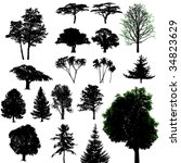 vector trees | Shutterstock . vector #34823629