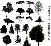 vector trees | Shutterstock . vector #34823629