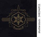 snowflake winter christmas... | Shutterstock . vector #348246911