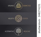 vector set of logo design... | Shutterstock .eps vector #348274151