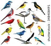 birds set colorful low poly... | Shutterstock .eps vector #348408491