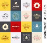 vintage frames  labels. bugs... | Shutterstock . vector #348413771