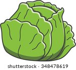 cabbage | Shutterstock .eps vector #348478619