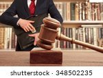 caucasian lawyer in court. law... | Shutterstock . vector #348502235