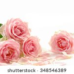 set of rose with pile of petals  | Shutterstock . vector #348546389