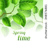spring time illustration with... | Shutterstock .eps vector #348576881