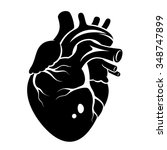 human heart icon isolated on a... | Shutterstock .eps vector #348747899