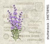 the lavender elegant card.... | Shutterstock .eps vector #348758981