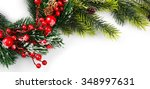 christmas tree branch with red... | Shutterstock . vector #348997631