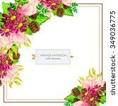 vintage delicate invitation... | Shutterstock . vector #349036775