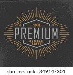 premium vintage style for... | Shutterstock .eps vector #349147301