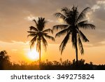 the coconut tree silhouette on... | Shutterstock . vector #349275824