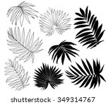 set of tropical palm leaves ... | Shutterstock .eps vector #349314767