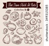 hand drawn doodle set fruit.... | Shutterstock .eps vector #349315385