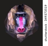 Mandrill. Polygonal Graphics....