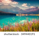 colorful summer morning on the... | Shutterstock . vector #349440191
