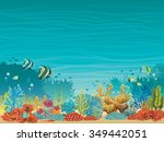 Underwater Seascape   Colorful...