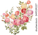 colorful roses isolated on... | Shutterstock . vector #349539227