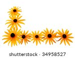 Black Eyed Susan Flower Corner...