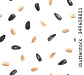 sunflower seeds isolated... | Shutterstock .eps vector #349608821