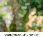 bokeh background blur   Shutterstock . vector #349705049