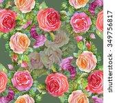watercolor summer garden... | Shutterstock . vector #349756817