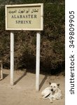 Small photo of dog of alabaster sphinx