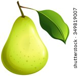 green pear with leaf... | Shutterstock .eps vector #349819007