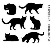 Set Of Cats Silhouettes On A...