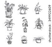 hand drawn houseplants in pot... | Shutterstock .eps vector #349922609