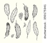 hand drawn feathers set on... | Shutterstock .eps vector #350175341