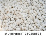 silkworm chrysalis being boiled ... | Shutterstock . vector #350308535