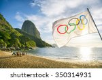 rio de janeiro  brazil  ... | Shutterstock . vector #350314931