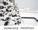 Lobster Trap Christmas Tree...