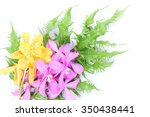 yellow and pink orchids on... | Shutterstock . vector #350438441