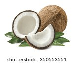 coconut pieces composition with ... | Shutterstock . vector #350553551