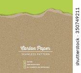 vector carton paper texture... | Shutterstock .eps vector #350749211