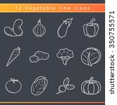 set of outline vegetables icons.... | Shutterstock .eps vector #350755571