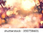 spring blossom background.... | Shutterstock . vector #350758601