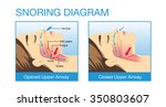 anatomy of woman while normal... | Shutterstock .eps vector #350803607